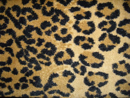 Animal print carpet rugs for Leopard print wall to wall carpet