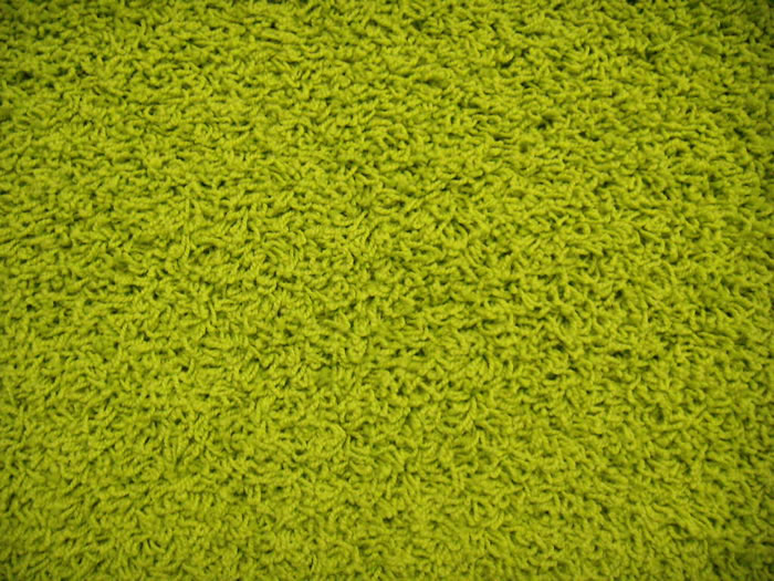 Bright And Colorful Collection Mod Green Frieze Carpet