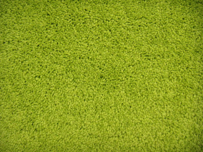 Bright And Colorful Collection Mod Green Plush Carpet Area